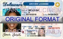 Delaware Fake ID Template Large
