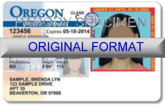 Oregon Fake ID