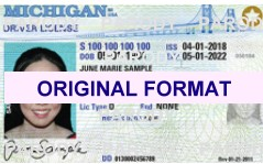 fake id michigan security features scannable with hologram