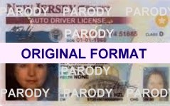 NEW JERSEY DRIVER LICENSE ORIGINAL FORMAT, DESIGN SPECIFICATIONS, NOVELTY SECURITY CARD PROFILES, IDENTITY, NEW SOFTWARE ID SOFTWARENEW JERSEY driver