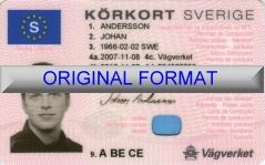 fake swedish fake id cards