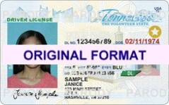 TENNESSEE FAKE IDS SCANNABLE FAKE TENNESSEE ID WITH HOLOGRAMS